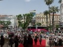 cannes_tag2_6