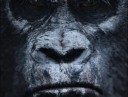 dawn_of_the_planet_of_the_apes_3