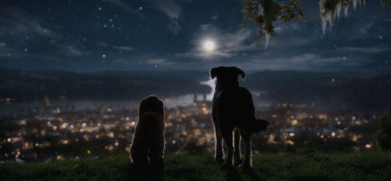 Susi und Strolch 2019 Disney Plus