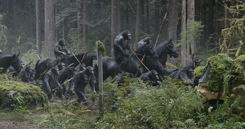 Planet der Affen: Revolution 2014 Szenenbild