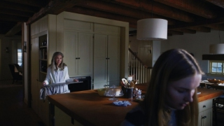 thevisit_3