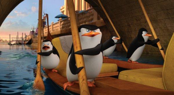 pinguine_3
