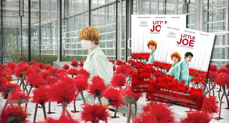 Little Joe – Glück ist ein Geschäft Gewinnspiel