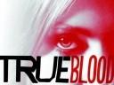 true-blood-stake7