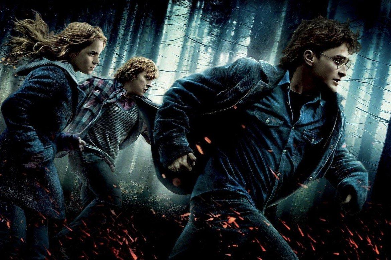 Harry Potter und die Heiligtümer des Todes: Teil 1 2010