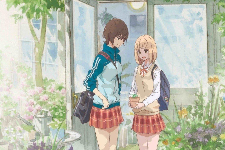 Kaze Anime Nights Girls Love