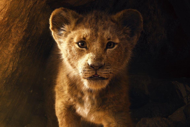 Lion Filmkritik