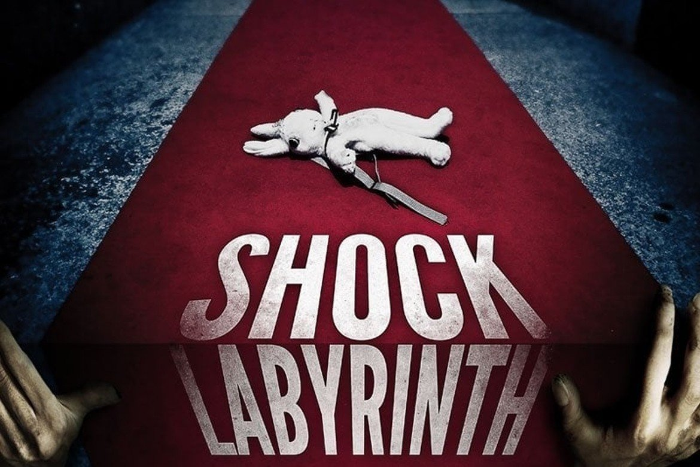 Schock Labyrinth 3D 2009